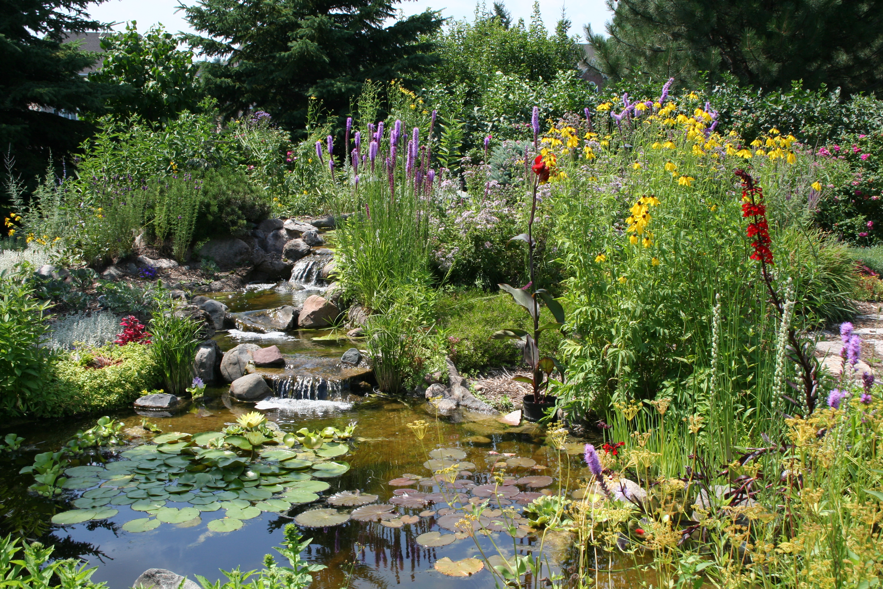 Wyckoff garden club join the joy of gardening for Garden pond unlimited
